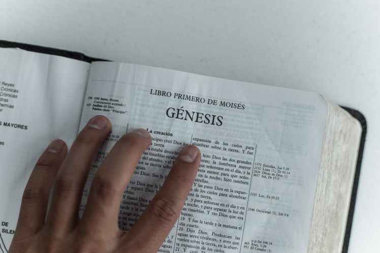 photo of person holding a bible